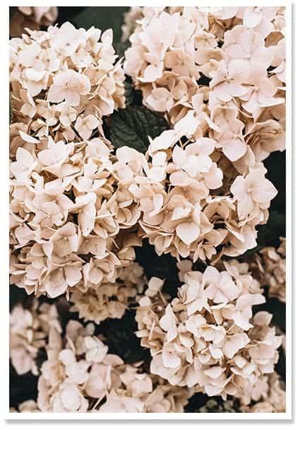 floral art decor