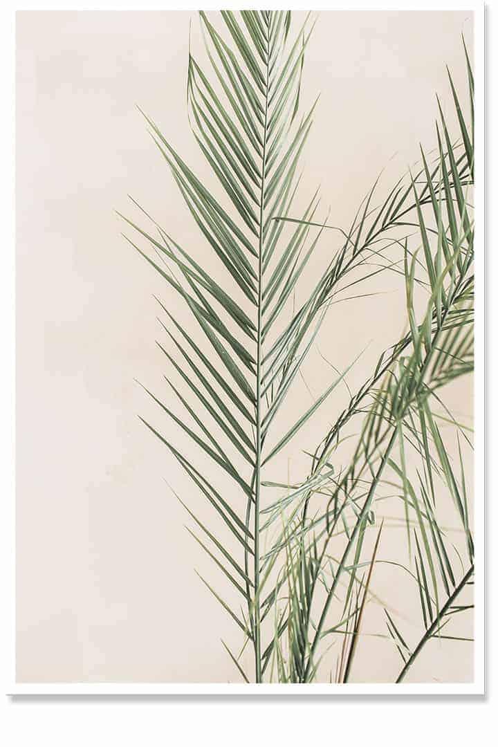 Palm Leaf wall art life