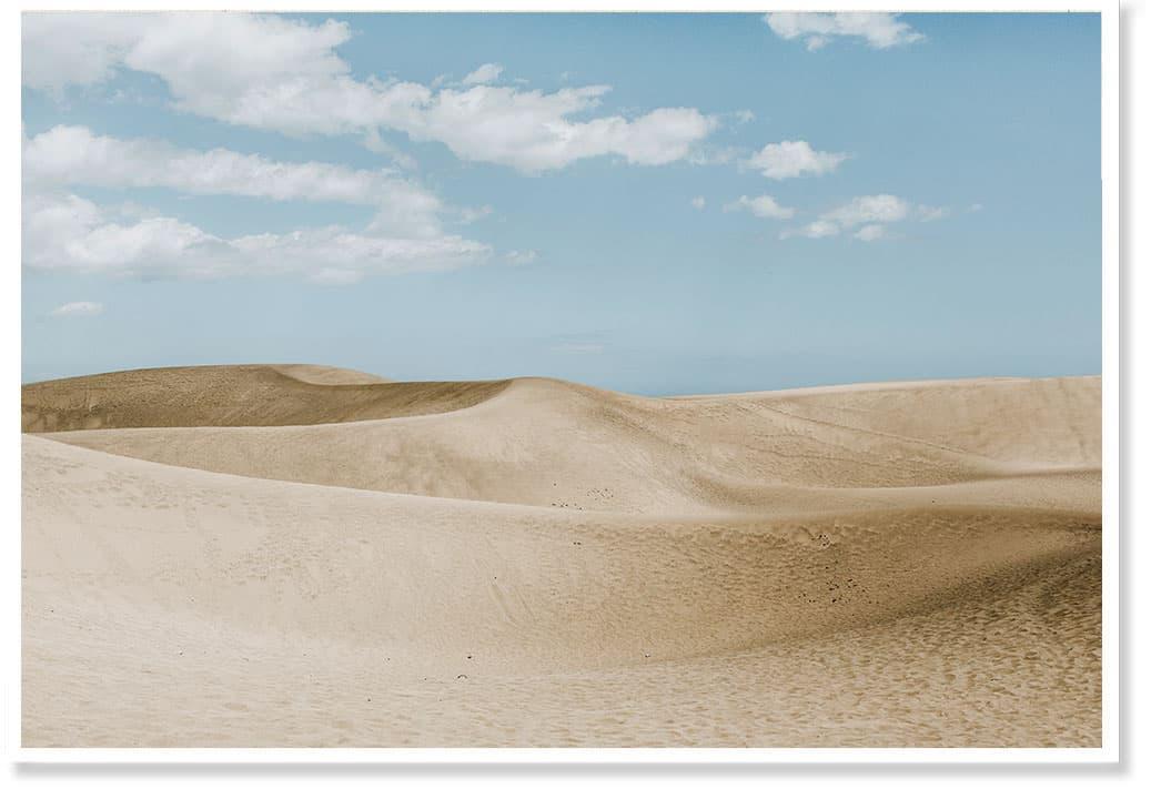 desert wallart