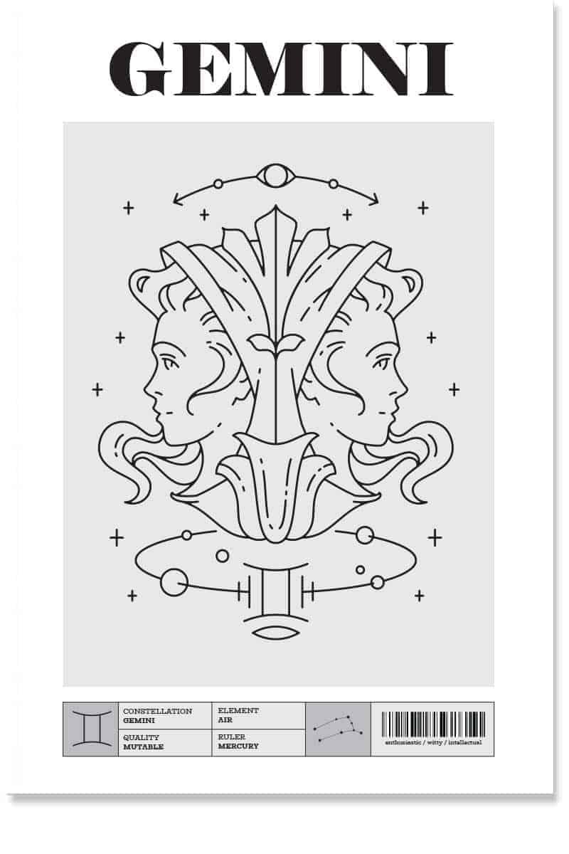 Gemini Zodiac Posters